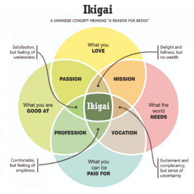 Ikigai is 1 more circle than the golden circle of Simon Sinek